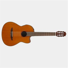 Image for NX Series NCX1C Nylon-String Acoustic-Electric Guitar from SamAsh