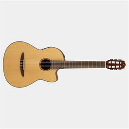Image for NX Series NCX1 Nylon-String Acoustic-Electric Guitar from SamAsh