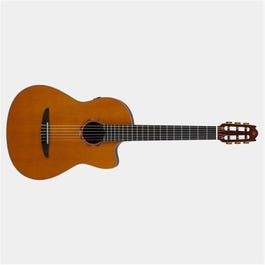 Image for NX Series NCX3C Nylon-String Acoustic-Electric Guitar from SamAsh