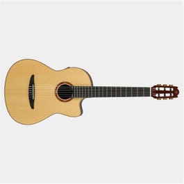 Image for NX Series NCX3 Nylon-String Acoustic-Electric Guitar from SamAsh