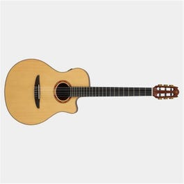 Image for NX Series NTX3 Nylon-String Acoustic-Electric Guitar from SamAsh