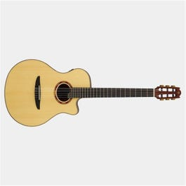 Image for NX Series NTX5 Nylon-String Acoustic-Electric Guitar from SamAsh