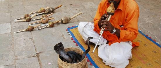 Music and Sound in Culture and Healing