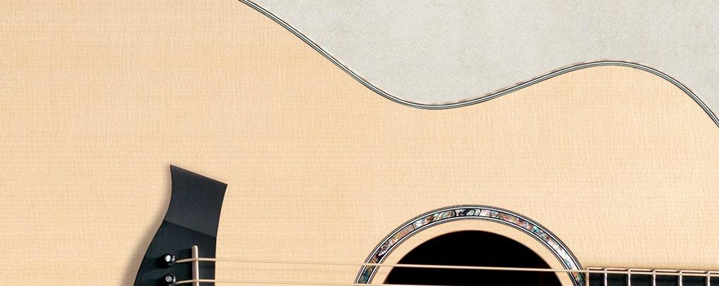 Taylor Guitars Sitka Spruce