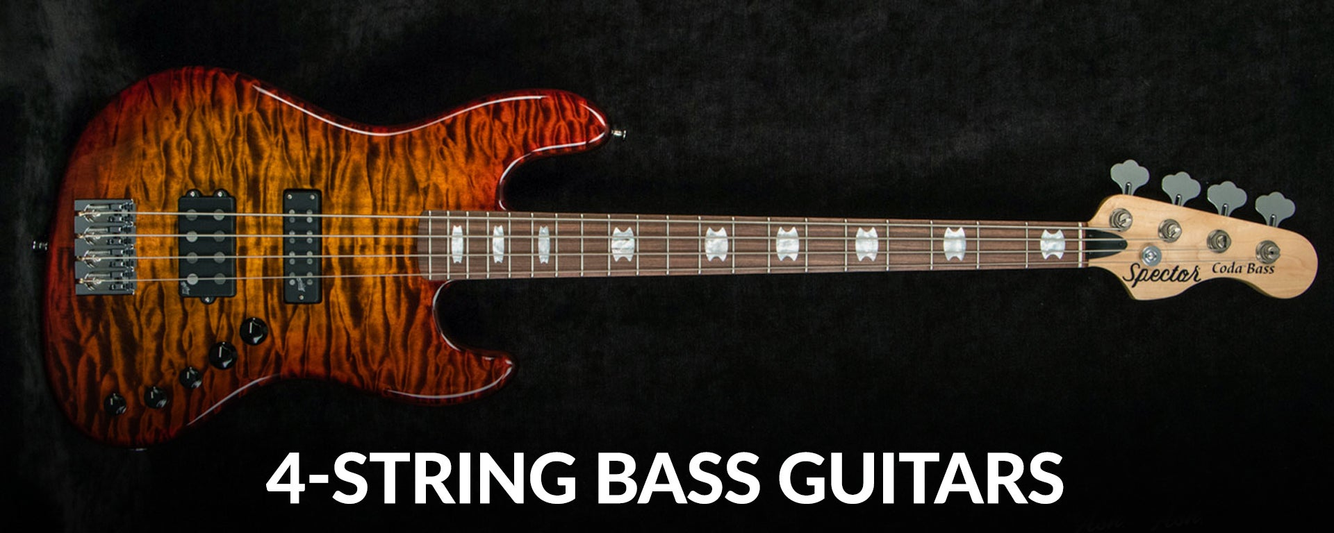 Shop 4-string electric bass guitars at Sam Ash
