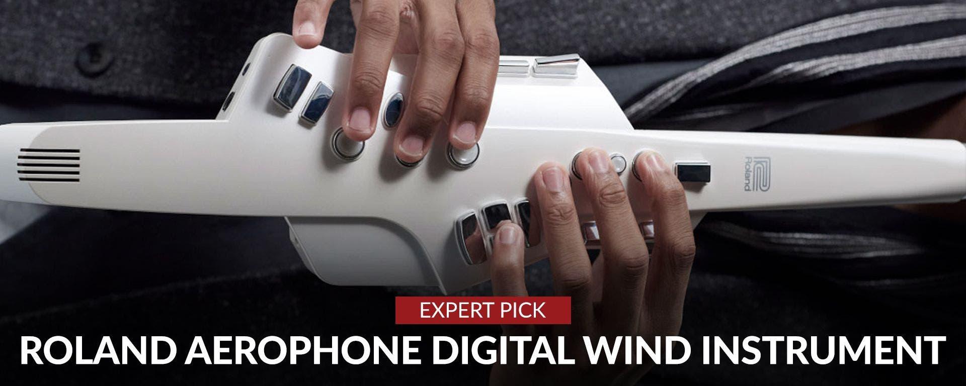 Roland Aerophone Digital Wind Instrument System At Sam Ash